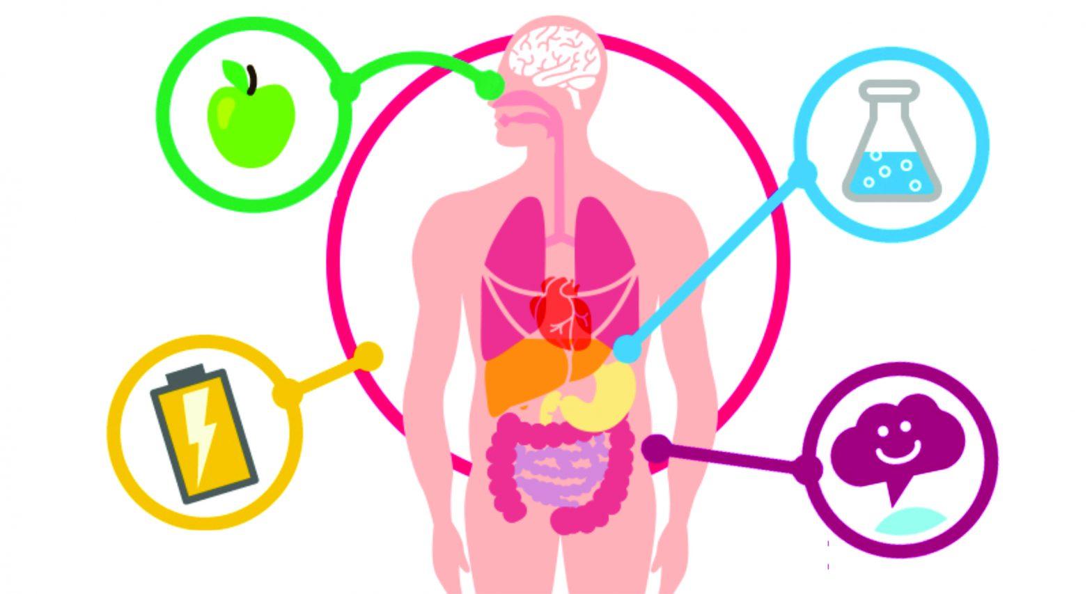 Acelerando ainda mais o metabolismo